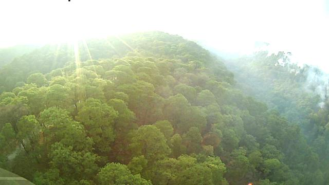 Sistema Estatal de Información Forestal Morelos / Flicker / Dominio Público