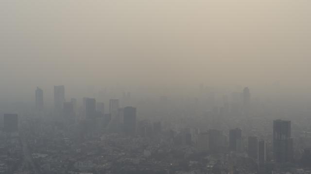 La foto de la ciudad de México cubierta de humo es de Santiago Arau, y es reproducida aquí con su autorización.