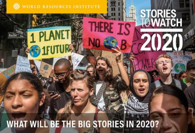 Los movimientos de activismo climático se pueden encontrar ahora en todo el mundO