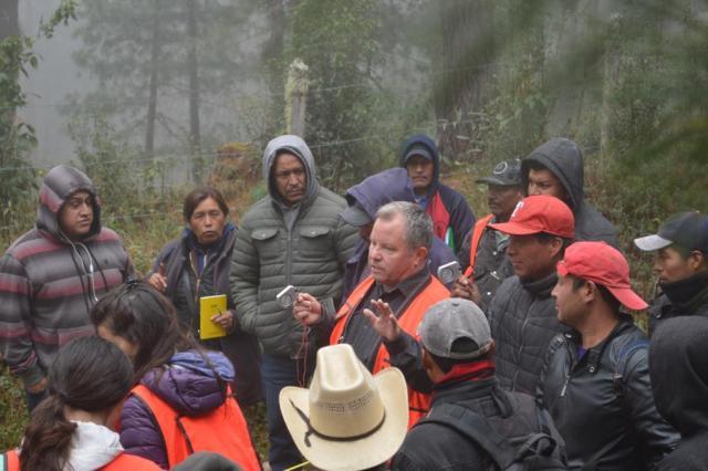 Proyecto Co2munitario, sobre carbono forestal, 2020