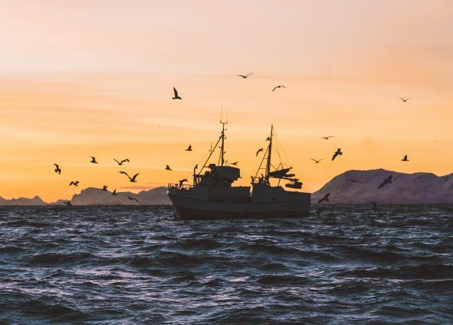 Las inversiones sostenibles basadas en el océano pueden generar una serie de beneficios para las economías, las comunidades, las empresas y los hogares. Foto por Knut Troim/Unsplash