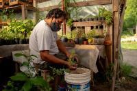 El Programa de Agricultura Urbana de Rosario, finalista del Premio de Ciudades 2020-2021 del WRI, se ha convertido en una piedra angular de su planificación de acción climática inclusiva, al tiempo que alivia la escasez de alimentos y brinda oportunidades económicas. Foto de WRI Ross Center for Sustainable Cities